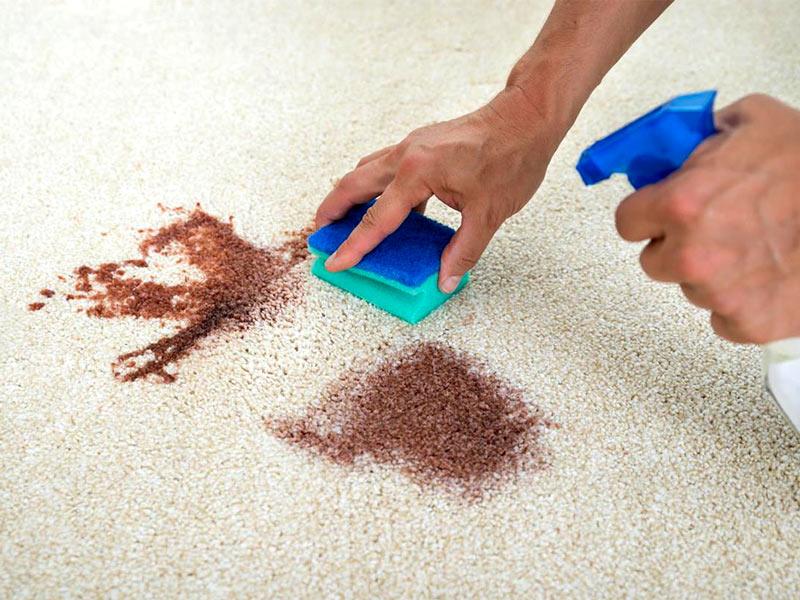 Գորգերի հետքերի մաքրում տան պայմաններում